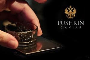 pushkinbhcc